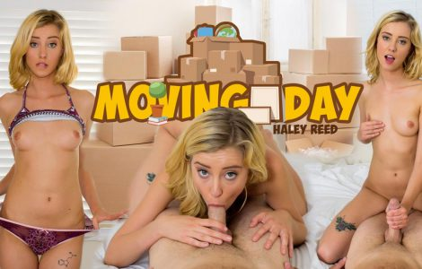 Moving Day Haley Reed WankzVR Review Poster